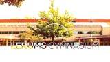 Lerums Gymnasium